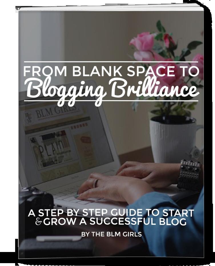 BloggingBrillianceBook-Kiwi-The-Beauty