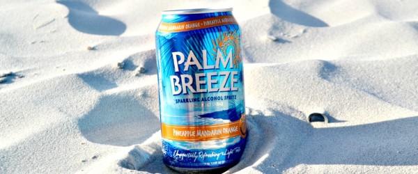 palm-breeze-vacay-everyday-blog-kiwi-the-beauty1