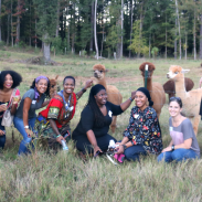Glamping with Bloggers at Camp Twin Lakes