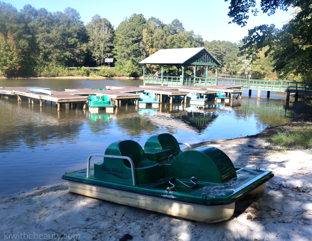 camp-twin-lakes-georgia-camp-for-children-with-disabilities-4