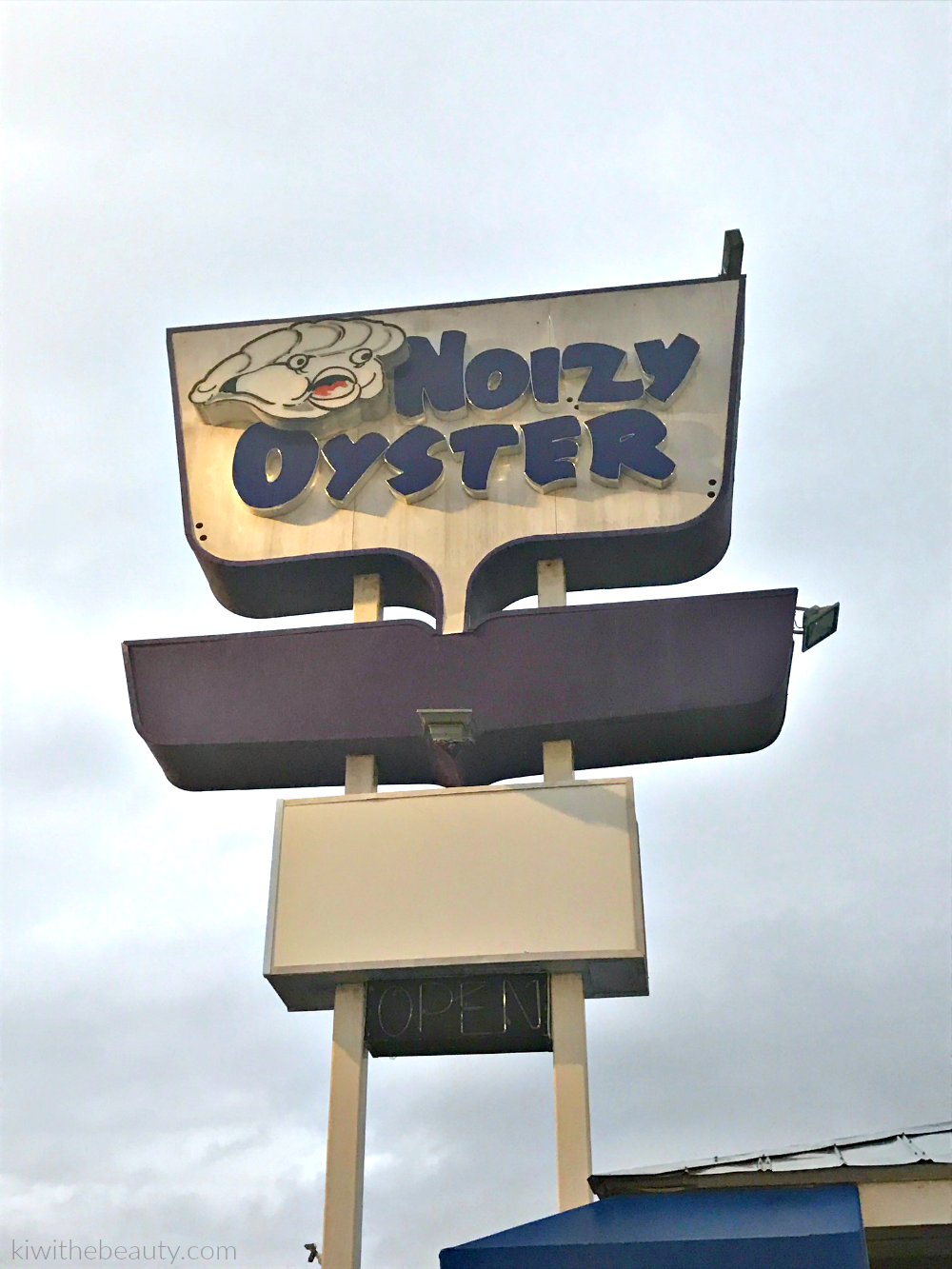 the-noizy-oyster-review-1
