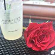 A Glorious Gala with Hendricks Gin Grand Garnisher Tour